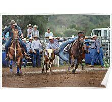Upper Horton Rodeo - Steer Wrestling Poster
