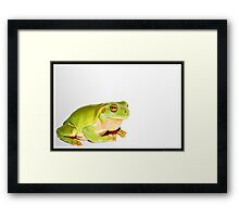 A green visitor Framed Print