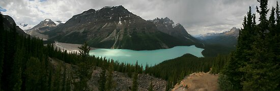 Peyto Lake by Paul Tupman
