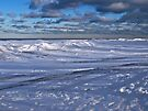 Ice Dunes On Lake Erie by Kathy Weaver