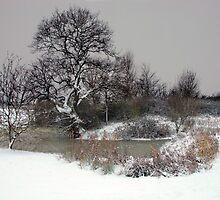 Winter by JEZ22