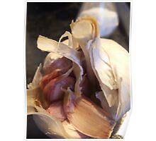 garlic  my kitchen Poster