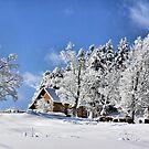 Vermont Winter Beauty by Deborah  Benoit