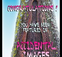 Accidental Images Banner by Olga