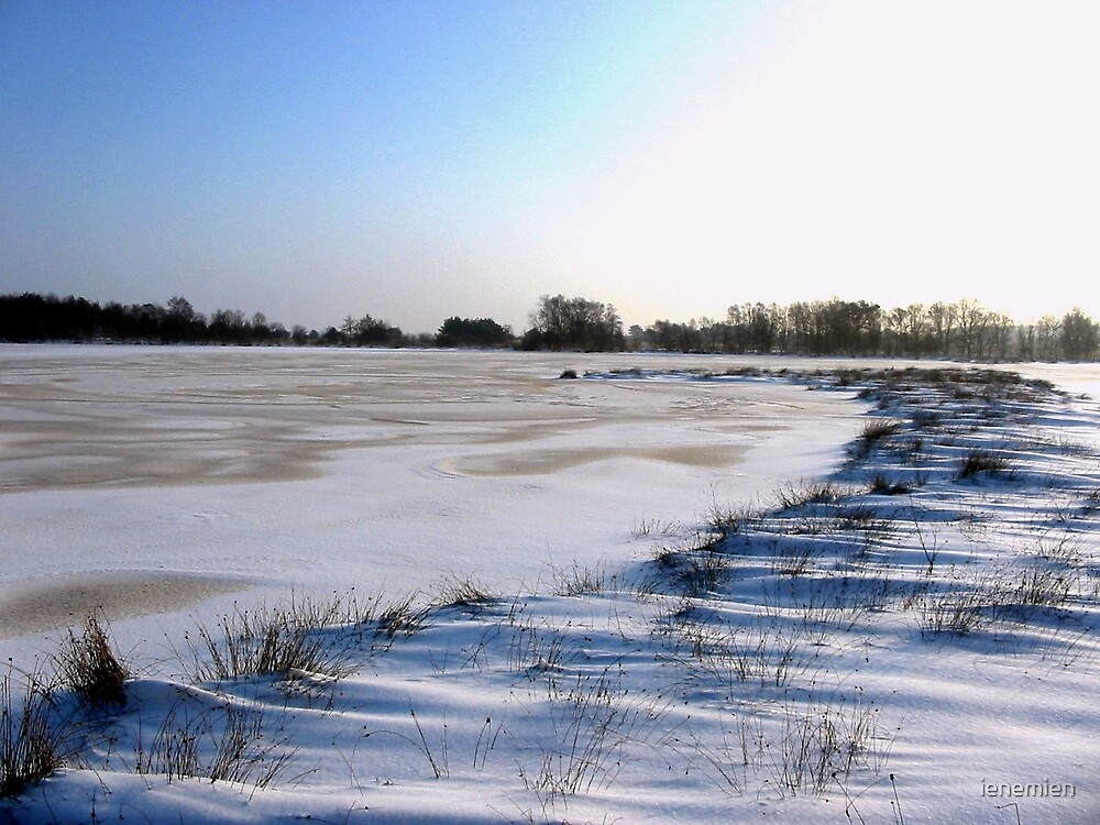 Cold and Ice by ienemien