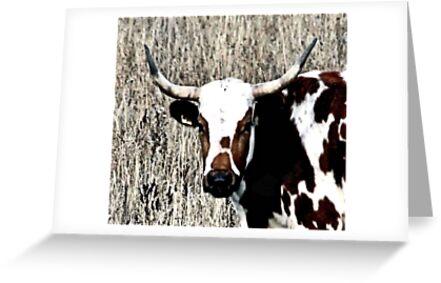 Like My Horns by Leslie van de Ligt