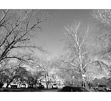 Canberra street, BW Photographic Print