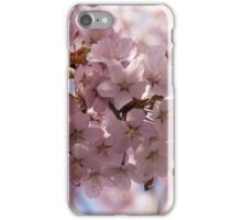 Pink Spring - Gently Pink Cherry Blossoms iPhone Case/Skin