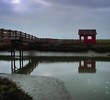 Don Edwards San Francisco Bay National Wildlife Refuge by BMV1