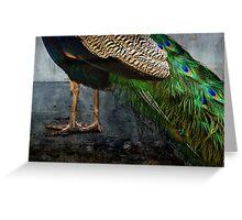 Peacock Feet Greeting Card