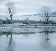 Killimer, Co Clare. by Connie  Danaher