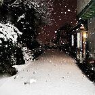 Pure Snowfall by Lyndy