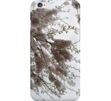 Just Lift Your Head and Enjoy Spring iPhone Case/Skin