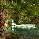 The Swimming Hole by Appel