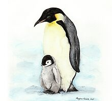 Emperor Penguin by Meaghan Roberts