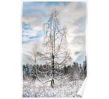 First snow fall Poster
