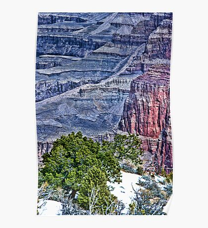 Canyon Trees - Pseudo HDR Poster