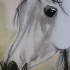Arabian mare head in pastels and charcoal by Laura Sykes