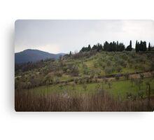 Olive Tree Hills Canvas Print