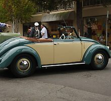 Old Volks by Ron LaFond