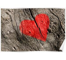 Red heart on the tree bark. Poster