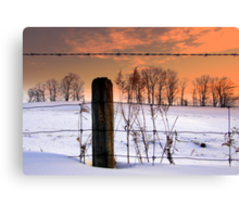 """""""don't fence me in""""... Canvas Print"""