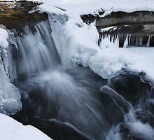 Winter Purification by Adam Bykowski