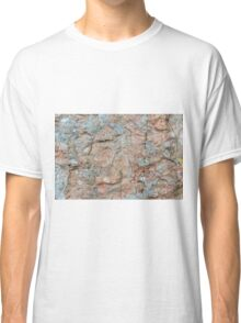 Orkney sandstone and lichen Classic T-Shirt