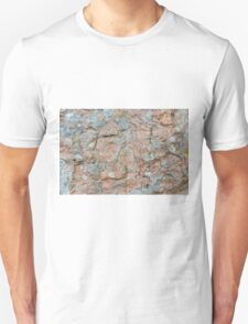 Orkney sandstone and lichen T-Shirt