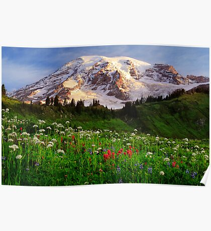 Rainier Wildflowers Poster