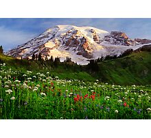 Rainier Wildflowers Photographic Print