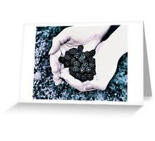 Kayla's Berries Greeting Card