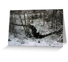 Winter Stream - Glenabo Woods, Cork, Ireland Greeting Card
