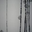 tree lit by AAndersen