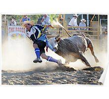 Bull Fighter in Flight Poster