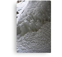 Twelve Shades of White Canvas Print