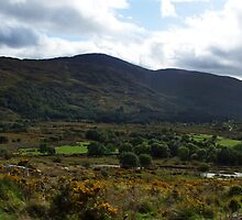 Under the  Macgillycuddy Reeks - Killarney, Kerry, Ireland by CFoley
