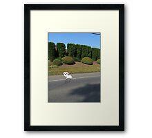 8 Bit Goat, In a High-Def World Framed Print