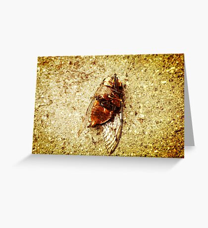 Cicada Greeting Card