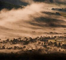 Samford Valley Sprits by Andrew Brooks