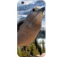 A Brave Nut iPhone Case/Skin