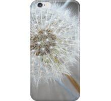 Through The Fence - Dandelion  iPhone Case/Skin
