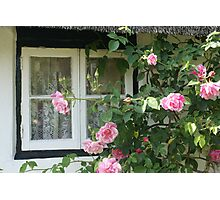 Rose framed thatched cottage window, Wiltshire Photographic Print