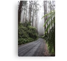 Over the top of Acheron Way Canvas Print