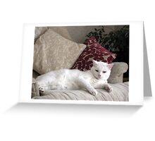 Casper reclining  Greeting Card