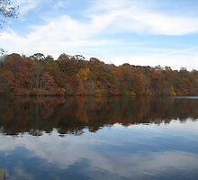 Autumn at Blydenburgh Lake by Angelsbythesea