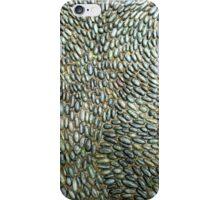 Pebbled Path 2 iPhone Case/Skin