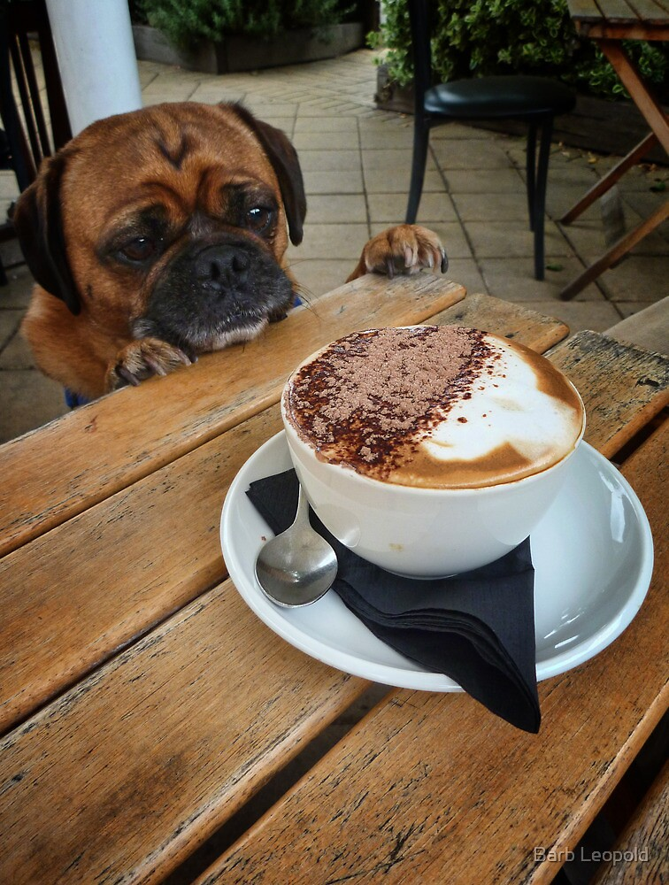 Is that My Puppaccino? by Barb Leopold