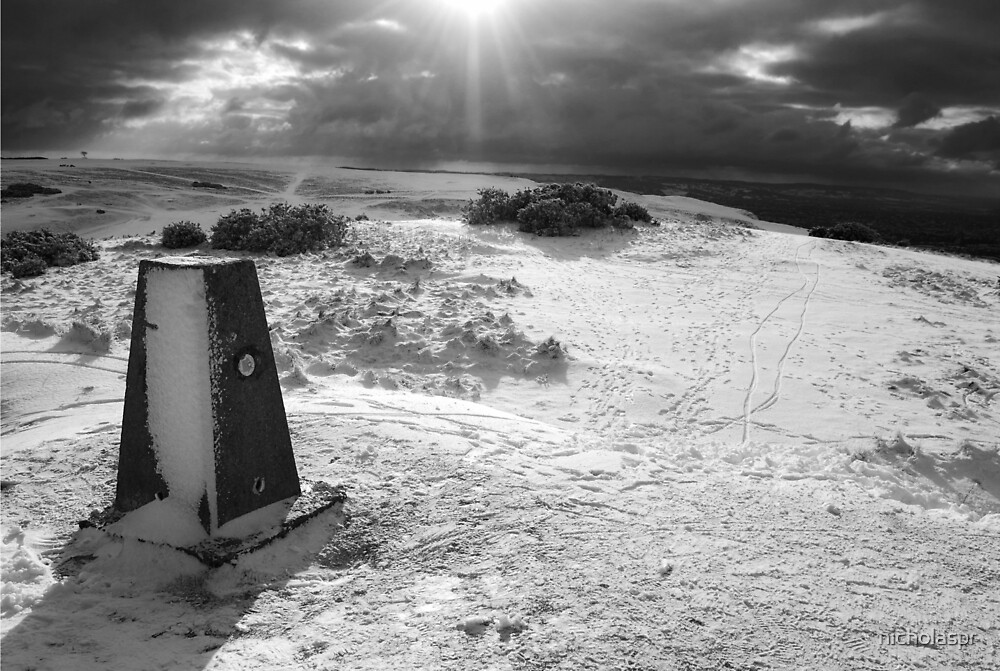 On Cleeve Hill by Nicholas Richardson