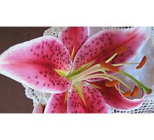 Bright Pink Lilium. Photographic Print
